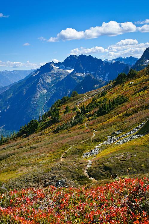 Sahale Arm Trail and view towards Magic Mountain above Cascade Pass, North Cascades National Park, Washington.