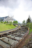 Bonneville Dam on the Columbia River, OR.