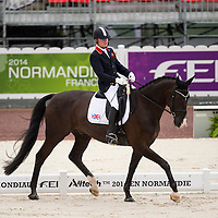 Para Dressage Team Test Grade Ib