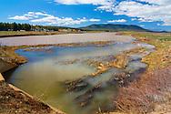 Mormon Lake - AZ