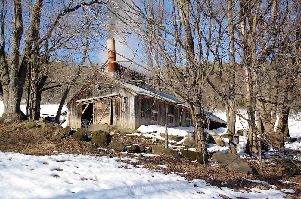 VT maple sugar shack, early spring