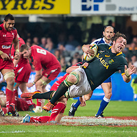 Castle Incoming Tour 2014, South Africa vs Wales