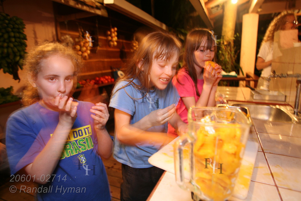 Ecoteach girls Soley Hyman (9), Caitlin Seibel (9) and Kelsey Seibel (11) eat mangos before fruit is pureed for ice cream at organic farm of Juan Bautista Castro; La Fortuna, Costa Rica.