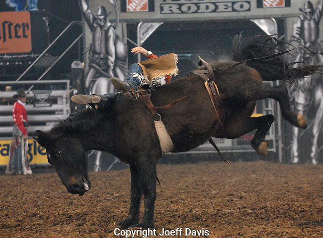 Thousands of people crowded into the Gwinnett Center for an evening of energized violence and brutality. The Toughest Cowboy competition had arrived. <br />