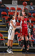 Assumption's Alyson Valainis (53) shoots over Linn-Mar's Kiah Stokes (40) during their Rivalry Saturday game at the US Cellular Center in Cedar Rapids on Saturday January 2, 2010. Linn-Mar defeated Assumption 52-48. (Stephen Mally/Freelance)