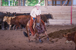 September 23, 2017 - Minshall Farm Cutting 5, held at Minshall Farms, Hillsburgh Ontario. The event was put on by the Ontario Cutting Horse Association. Riding in the $1,000 Amateur Class is Alan Garniss on Qb Tilly Highbrow Cd owned by the rider.