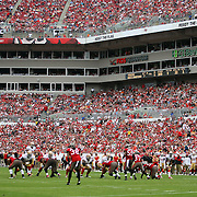 Field of play during an NFL football game between the San Francisco 49ers  and the Tampa Bay Buccaneers on Sunday, December 15, 2013 at Raymond James Stadium in Tampa, Florida.. (Photo/Alex Menendez)