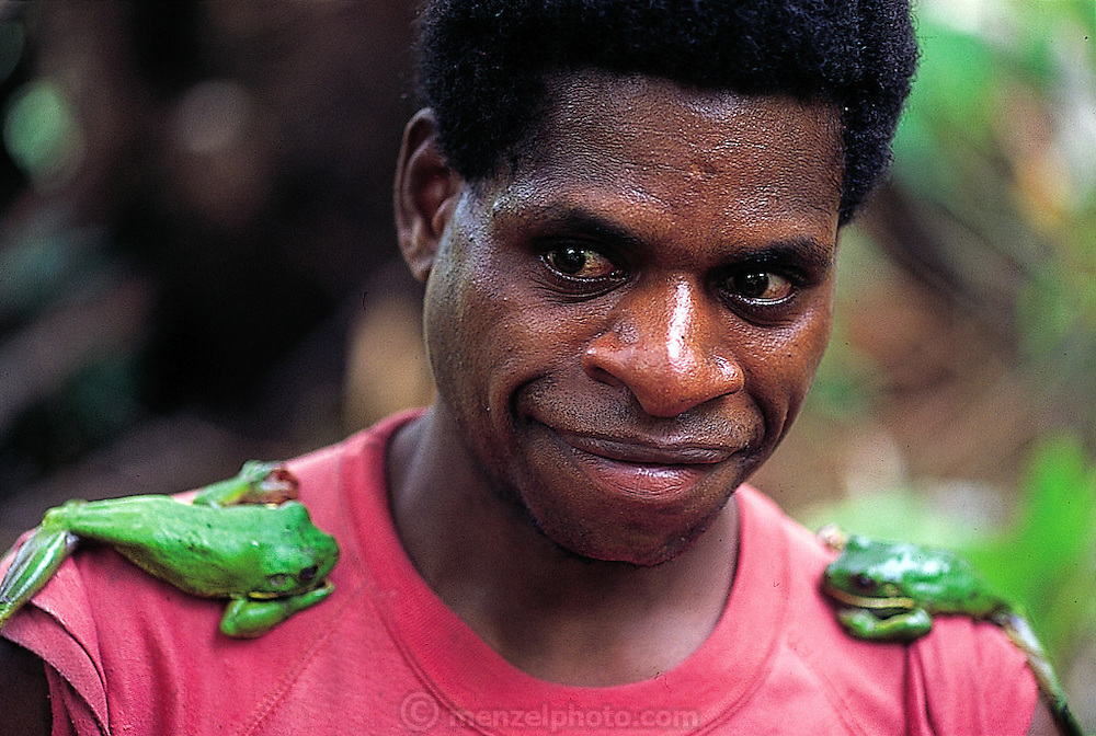 Indonesian forest frog epaulettes, worn in jest, down river from the Sawa village, Irian Jaya, Indonesia. The frogs will be part of dinner. (Man Eating Bugs page 74 Bottom)
