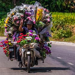 Vietnam Streetphotography