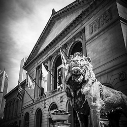Art Institute of Chicago lion statue black and white photo. The bronze lions are a popular Chicago attraction and one of Chicago's most recognizable symbols.