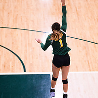 4th year outside hitter Ashlee Sandiford (1) of the Regina Cougars in action during Women's Volleyball home game on November 18 at Centre for Kinesiology, Health and Sport. Credit: Arthur Ward/Arthur Images
