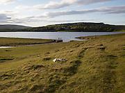Malham Tarn lake, Yorkshire Dales national park, England, UK