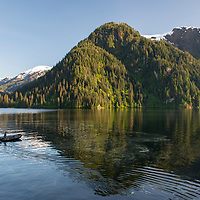 A naturalist drives an inflatable zodiac boat in Rudyerd Bay in the Misty Fjords National Monument, Alaska.