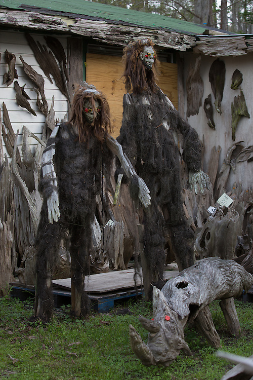 Pierre Part, Louisiana, March 18th, 2013, Creations made out of  Cypress drift wood by self-taught artist Adam Morales in front of his home and museum. The Adam's Driftwood Museum  at the end of South Bay Road on the bayou is an off the beaten trail tourist destination.