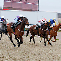 Dorothy's Dancing and George Baker winning the 2.30 race