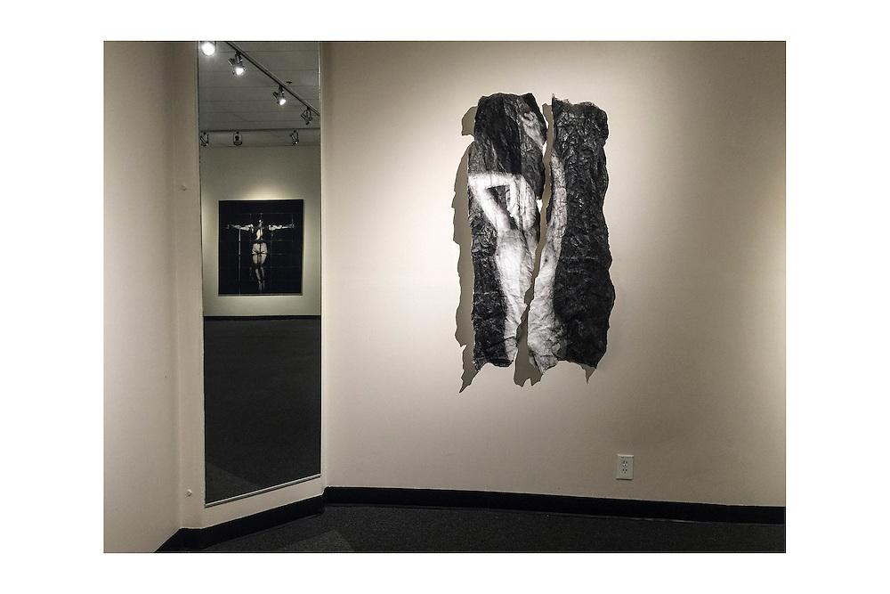 Rachel Liu, Artist, Photographer <br /> Title: Installation View<br /> Exhibition: Silver Spillers