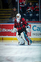 KELOWNA, CANADA - MARCH 10:  James Porter #1 of the Kelowna Rockets warms up in net against the Kamloops Blazers on March 10, 2018 at Prospera Place in Kelowna, British Columbia, Canada.  (Photo by Marissa Baecker/Shoot the Breeze)  *** Local Caption ***