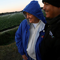 DOVER, FL -- January 6, 2010 -- Farmer Michelle Williamson shares a laugh with Marcos Rios, with Driscoll's quality assessment, as they watch sprinkler heads coat strawberry fields with ice at G & F Farms in Dover, Fla., on Wednesday, January 6, 2010.  The cold temperatures in Florida are lingering this week, often dipping into the 20's overnight, which has stalled the strawberry picking as farmers rush to save their crops.
