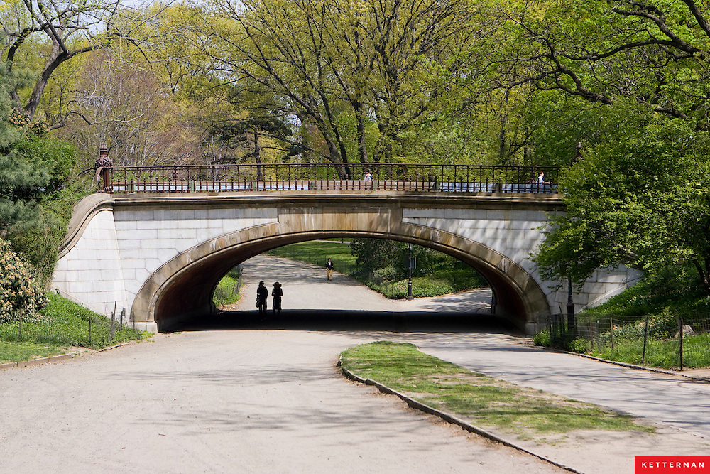 Famous bridge Central Park in New York City