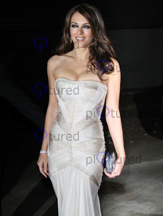 Elizabeth Hurley Grey Goose Character & Cocktails The Elton John AIDS Foundation Winter Ball, Maison de Mode, London, UK, 30 October 2010: For piQtured Sales contact: Ian@Piqtured.com +44(0)791 626 2580 (picture by Richard Goldschmidt)