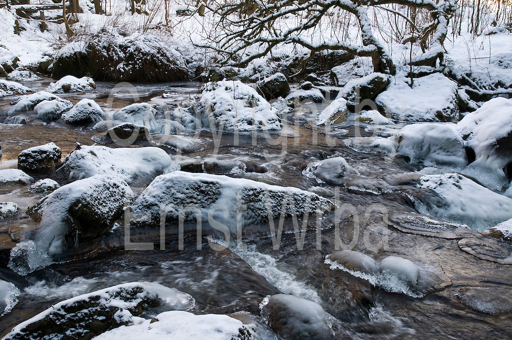 Fluss Kalte Bode, Eis, Schnee, Winter, Schierke, Harz, Sachsen-Anhalt, Deutschland | river Kalte Bode, ice, snow, winter, Schierke, Harz, Saxony-Anhalt, Germany