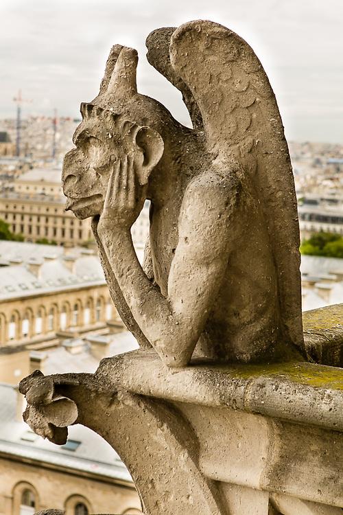 The bored gargoyle, Notre Damn de Paris