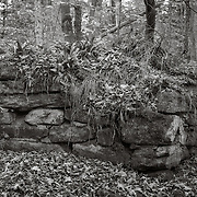Soapstone Quarry, Wahconah Falls Brook, Dalton, MA