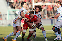 Juan SMITH / Camille GERONDEAU  - 10.01.2015 - Toulon / Racing Metro - 16e journee Top 14<br />