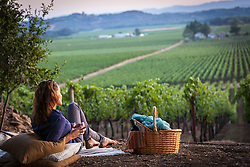 A glass of wine in the vineyards