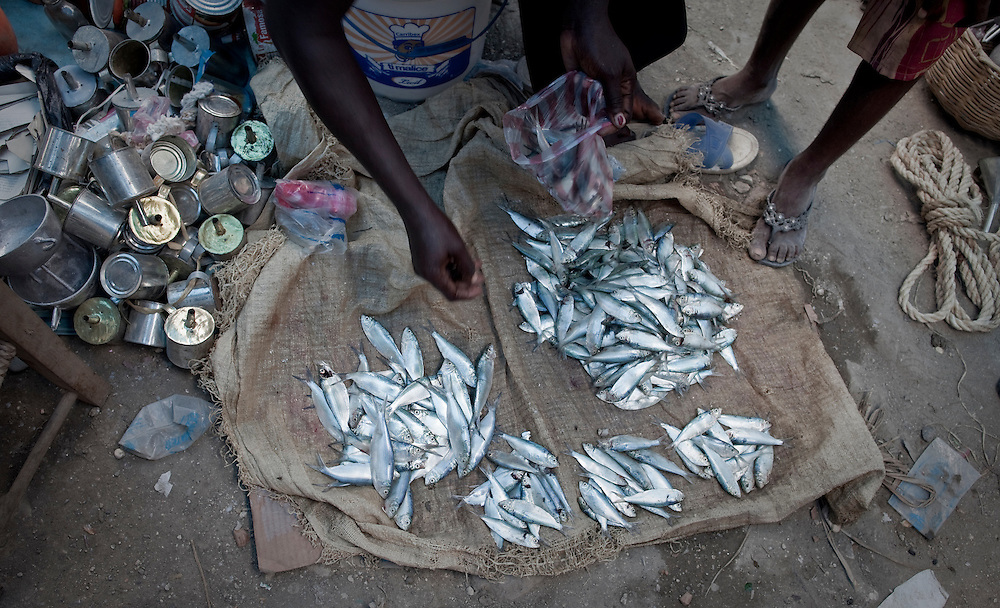 Selling fish at the market in Marigot, Haiti