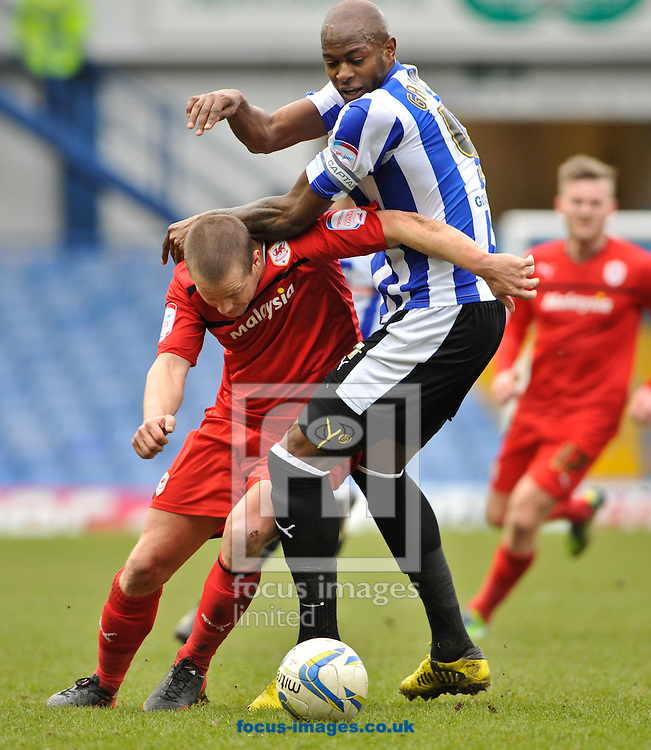 Picture by Richard Land/Focus Images Ltd +44 7713 507003.16/03/2013.Anthony Gardner of Sheffield Wednesday and Heidar Helguson of Cardiff City fight for the ball during the npower Championship match at Hillsborough, Sheffield.