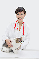 Portrait of female veterinarian with cat against gray background