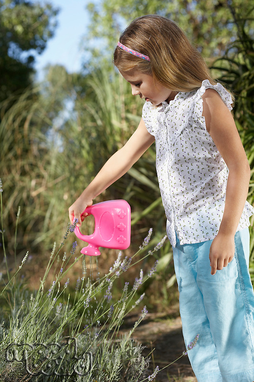 Girl (5-6) watering plant with plastic can