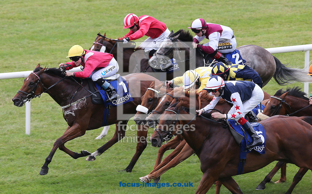 Fran Berry on Hi Emperor (No.5) wins the Marker Hotel Handicap from Akasaka ridden by Caroline Murtagh at the Curragh, Newbridge<br /> Picture by Lorraine O'Sullivan/Focus Images Ltd +353 872341584<br /> 19/07/2014