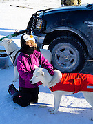 A girl pets a sled dog at the Apostle Islands Sled Dog Race, hosted by the Bayfield Chamber of Commerce, near Bayfield, WI