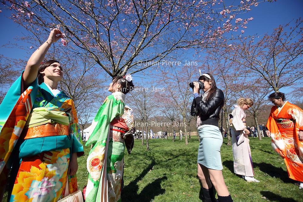 Nederland, Amstelveen , 25 maart 2012..Met Sakura (Cherry Blossom Festival), vieren Japanners de komst van het voorjaar. Daarbij is het een traditie om met vrienden en familie van een heerlijke picknick te genieten, zittend onder de bloesembomen. Bloemen (en natuur in het algemeen ) hebben in Japan een symbolische waarde. De kersenbloesem geeft een nieuw begin aan, maar verwijst tegelijkertijd op een subtiele manier naar de instabiliteit van het leven. Jaarlijks in de maand maart of april wordt in Amstelveen het Cherry Blossom Festival georganiseerd..Op de foto Japanse en niet Japanse jonge dames in traditionele klederdracht (kimono) voor de tot nu toe enige bloeiende kersenboom wachten op de officiele traditionele openingsspeech van het festival (l) in het park..Er werd stevig geposeerd en gefotografeerd..Foto:Jean-Pierre Jans