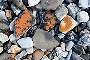 Rocks and lichens at a beach at Hornsund, south-western Spitsbergen, Svalbard