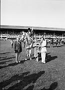 The Dublin Horse Show.1982.07.08.1982.08.07.1982.7th August 1982...The Dublin Horse Show..R.D.S., Ballsbridge, Dublin.The winners of the Aga Khan team trophy were Great Britain. The shows' leading rider was Mr Harvey Smith, Great Britain..Picture shows the awarding of the trophy to the England team.