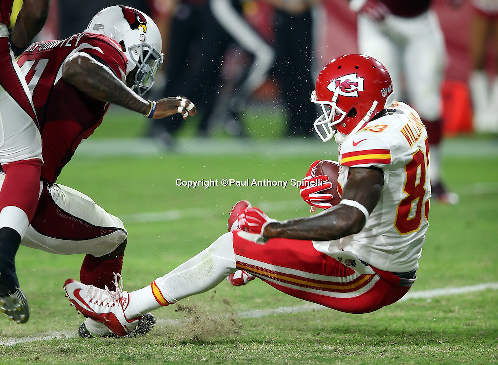 Kansas City Chiefs wide receiver Fred Williams (83) falls backwards into the end zone as he catches a 13 yard pass for a second quarter touchdown that ties the score at 10-10 during the 2015 NFL preseason football game against the Arizona Cardinals on Saturday, Aug. 15, 2015 in Glendale, Ariz. The Chiefs won the game 34-19. (©Paul Anthony Spinelli)