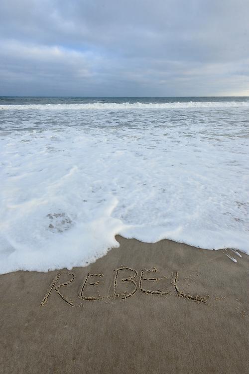 Rebel, Mecox Beach, Jobs Lane, Bridgehampton, Long Island, NY