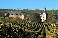 DEU, Germany, Rheingau, castle Vollrads in Oestrich-Winkel.....DEU, Deutschland, Rheingau, Schloss Vollrads in Oestrich-Winkel.........