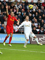 Sunday, 25 November 2012..Pictured: Pablo Hernandez of Swansea (R)..Re: Barclays Premier League, Swansea City FC v Liverpool at the Liberty Stadium, south Wales.