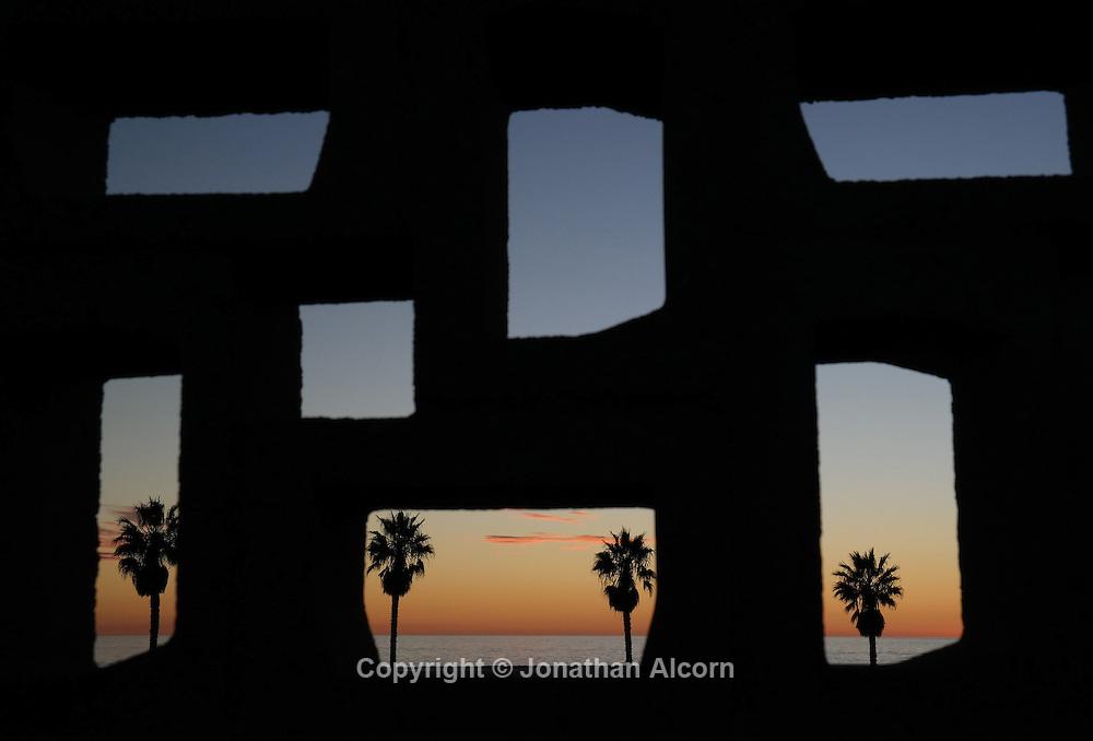 Palm trees stand as seen through a wall in Santa Monica. photo by Jonathan Alcorn Galaxy NX