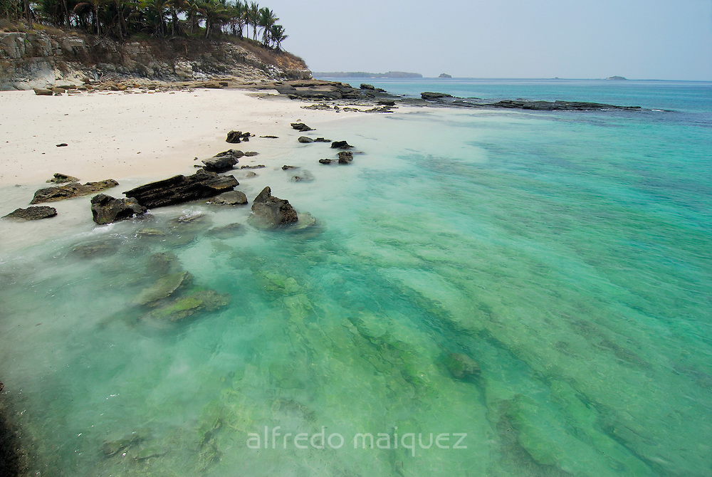 Rocky beach with clear waters and palm tree forest in Contadora island. Las Perlas archipelago, Panama province, Panama, Central America.