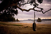 Whangaumu Bay, tire swing, New Zealand