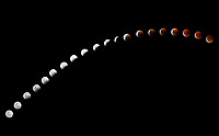 Multiple images showing the lunar eclipse and The super blood wolf moon 2019