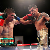 VERONA, NY - JUNE 08: Diego De La Hoya (L) punches Jose Salgado during the Golden Boy on ESPN fight night at Turning Stone Resort Casino on June 8, 2018 in Verona, New York. (Photo by Alex Menendez/Getty Images) *** Local Caption *** Diego De La Hoya; Jose Salgado