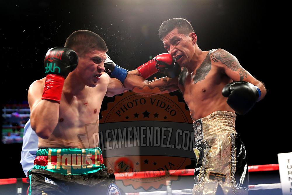 VERONA, NY - JUNE 08: Diego De La Hoya (L) punches Jose Salgado during the Golden Boy on ESPN fight night at Turning Stone Resort Casino on June 8, 2018 in Verona, New York. (Photo by Alex Menendez/Getty Images) *** Local Caption *** Diego De La Hoya; Jose Salgado