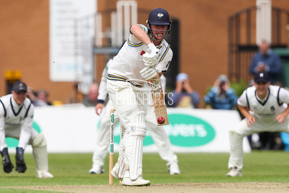 Gary Ballance of Yorkshire batting during the Specsavers County Champ Div 1 match between Yorkshire County Cricket Club and Warwickshire County Cricket Club at York Cricket Club, York, United Kingdom on 17 June 2019.