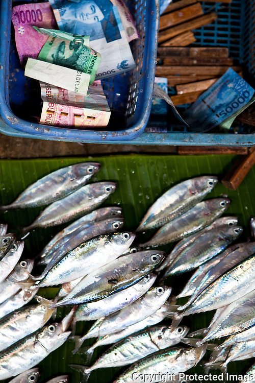 small fish sold in market, Rantepao, Sulawesi, Indonesia